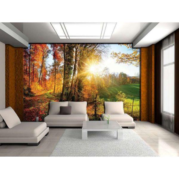 Fototapet decorativ - Toamna in padure - 368 x 254 cm/ Vlies