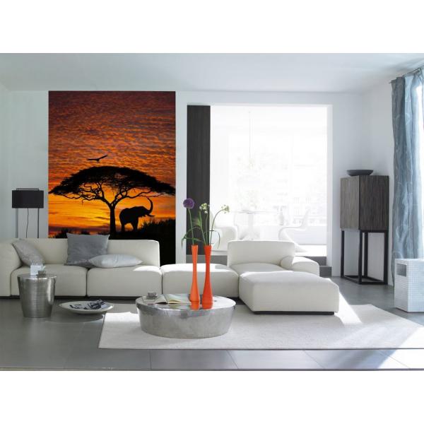 Fototapet decorativ Africa